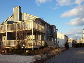 Perfect 4 bedroom House in Avalon - Avalon vacation rentals