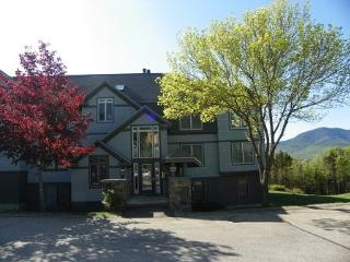 Beautiful Waterville Valley Northface Condo with Mountain Views! - Waterville Valley vacation rentals