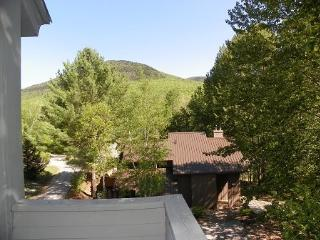 Roomy Vacation Condo across from Loon Mountain Resort - Lincoln vacation rentals