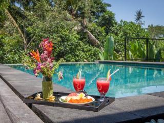 3 bedroom Villa with Safe in Buwit - Buwit vacation rentals