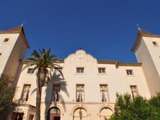 Chateau Saint Martin des Champs B&B - Béziers vacation rentals