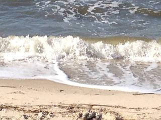BEACHFRONT + PRIVATE 40-FT HEATED POOL + JACUZZI - Cape May vacation rentals