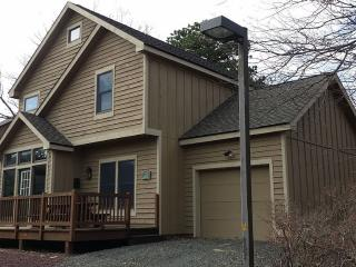Camelback / 3 Bdrms / 3 Baths / Hot Tub - Tannersville vacation rentals