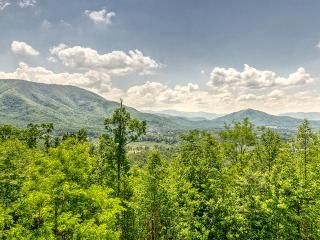 Spring BOGO 4 night min April & May!! Beautiful Views!!! 5BR/4.5BA Sleeps 16 - Pigeon Forge vacation rentals