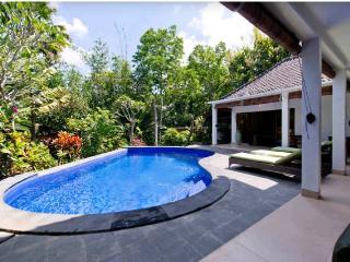 Tropical 3 Bedrooms Villa Seminyak - Seminyak vacation rentals