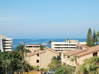 KONA HAWAII GEM - Kailua-Kona vacation rentals
