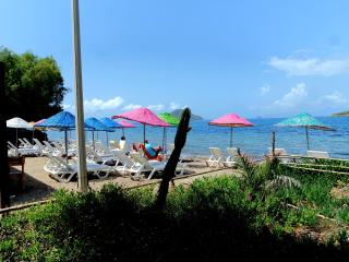 Bungalow On The Beach - Turgutreis vacation rentals