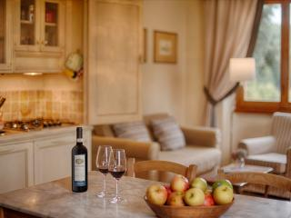 Sunny, modern apartment on Chianti winefarm - Greve in Chianti vacation rentals