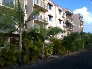 2 bedroom Apartment with A/C in Trou aux Biches - Trou aux Biches vacation rentals