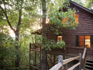 2 bedroom Stacked Log Cabin in North Georgia - Cherry Log vacation rentals