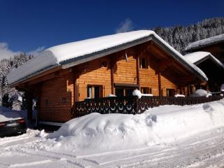 chalet 1775 - Les Gets vacation rentals