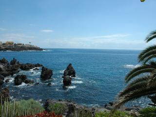 Punta Negra 6 - Puerto de Santiago vacation rentals