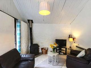 Honeypot Cottage with Indoor Spa, Alpacas, Dorset - Whitchurch Canonicorum vacation rentals