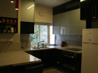 All you need for Perfect holiday! - Jerusalem vacation rentals