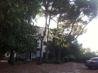 Appartamento in villa - Ischia Porto vacation rentals