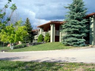 Lindsay Lodge-- Under New Ownership - Heber City vacation rentals