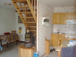 appartement 65m2 à VALLOUISE massif des ECRINS - Vallouise vacation rentals