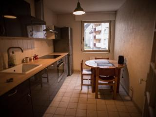 Residence Baccara Suite - Strasbourg vacation rentals