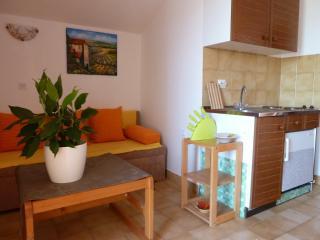 Apartments Tomic A4(2+2) - Mastrinka vacation rentals