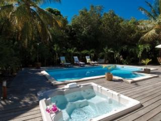 Extravagant 3 Bedroom Villa in Terres Basses - Plum Bay vacation rentals