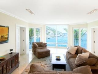 Gorgeous 3 Bedroom Condo in Oyster Bay - Oyster Pond vacation rentals