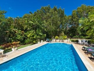 Fantastic 5 Bedroom in Sandy Lane - Sandy Lane vacation rentals