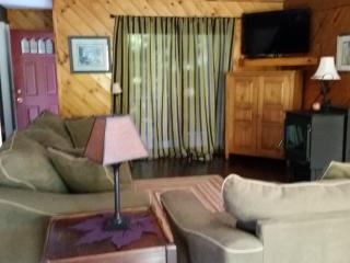HUNTER HIGHLAND CONDO UNIT # V- 1 ON SITE WALK - Hunter vacation rentals