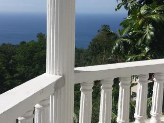 Lovely Guest house with Outdoor Dining Area and Garage in Port Antonio - Port Antonio vacation rentals