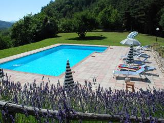 Wonderful Villa with Internet Access and Private Outdoor Pool - Marradi vacation rentals