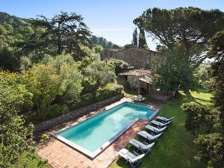 Spacious Villa with Internet Access and Balcony - Province of Lucca vacation rentals