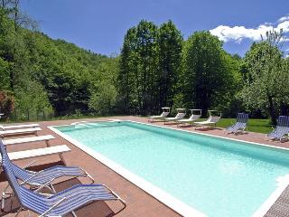 Comfortable Villa with Internet Access and Television - Pontepetri vacation rentals