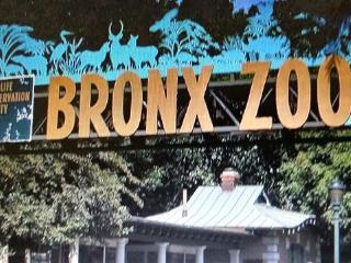 Hamiltons Hideaway Crash Pad M1 - Bronx vacation rentals