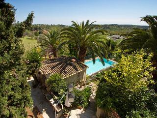 06.320 - Villa with pool i... - Vence vacation rentals