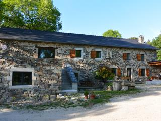 Nice Farmhouse Barn with Internet Access and A/C - Saint-Hostien vacation rentals