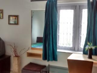 Spacious 4 bedroom Vadodara Bungalow with Patio - Vadodara vacation rentals