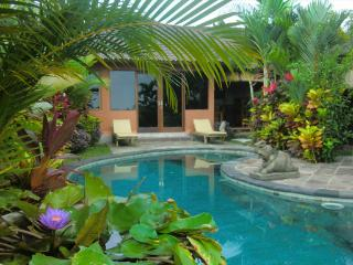Orchid Bungalow Ubud -pool, 2 brm, ricefield view - Ubud vacation rentals