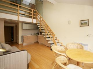 Spacious apartament only 80 meters to the sea - Palanga vacation rentals