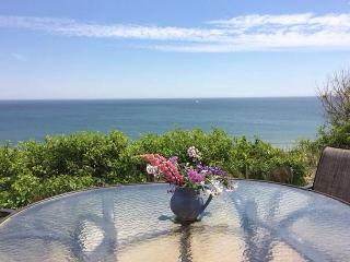 New Listing! Rare Oceanfront Cottage in Eastham! - Eastham vacation rentals