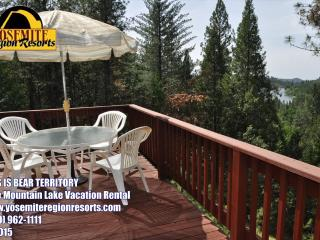Lakeview PoolTable PingPong 1m>Beach 25m>Yosemite - Groveland vacation rentals