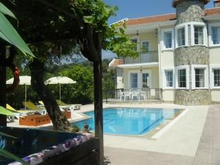 Beautiful Villa with Internet Access and A/C - Saklikent vacation rentals