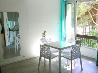 Studio la Grande Motte - La Grande-Motte vacation rentals