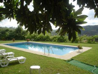 Nice Farmhouse Barn with Internet Access and Shared Outdoor Pool - Amarante vacation rentals