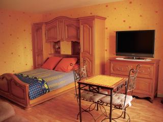 Studio 3* tout confort - Cures Vittel - Vittel vacation rentals
