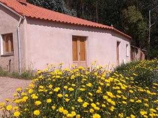 Nice 2 bedroom Cottage in Monchique with Balcony - Monchique vacation rentals