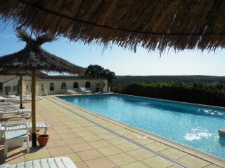 logement en garrigue avec vue sur le pic st loup - Argelliers vacation rentals