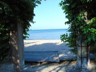 Beach front, central location, apartment for 4-5 people - Moraitika vacation rentals