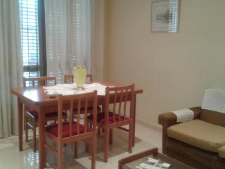 Camarasa Apartaments For Rent. Cal Benet Del Manig - Province of Lleida vacation rentals