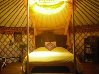 Nature Retreat in stylish Mongolian Yurts - Penela vacation rentals