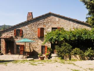 4 bedroom Farmhouse Barn with Internet Access in Ficulle - Ficulle vacation rentals