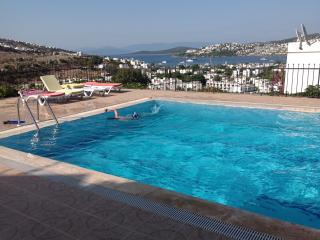 Bodrum Gundogan Private Seaview Villa - Gundogan vacation rentals